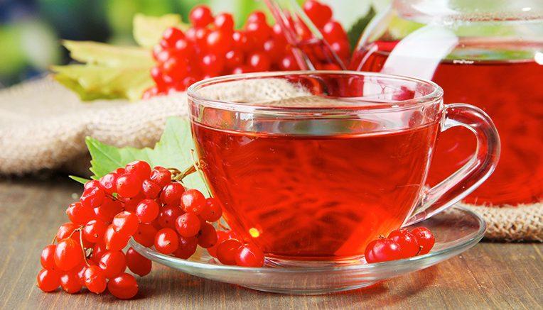 При бронхите, тонзиллите и ангине помогает калиновый чай