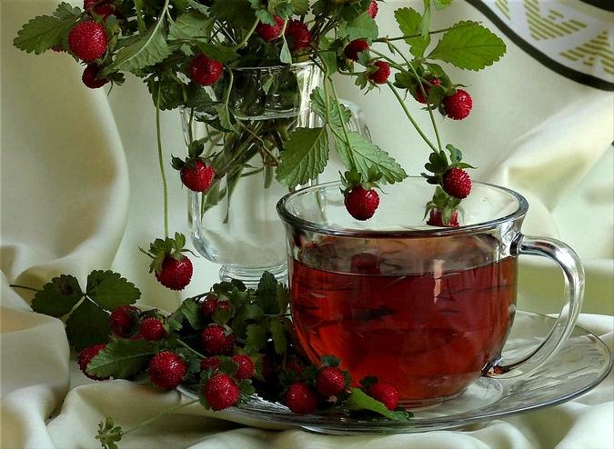 Готовим чай из листьев и ягод земляники