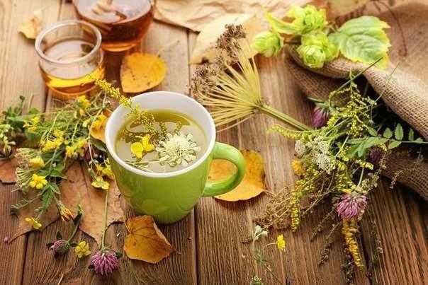 Эти ароматные чаи успокоят нервы и согреют осенним вечером