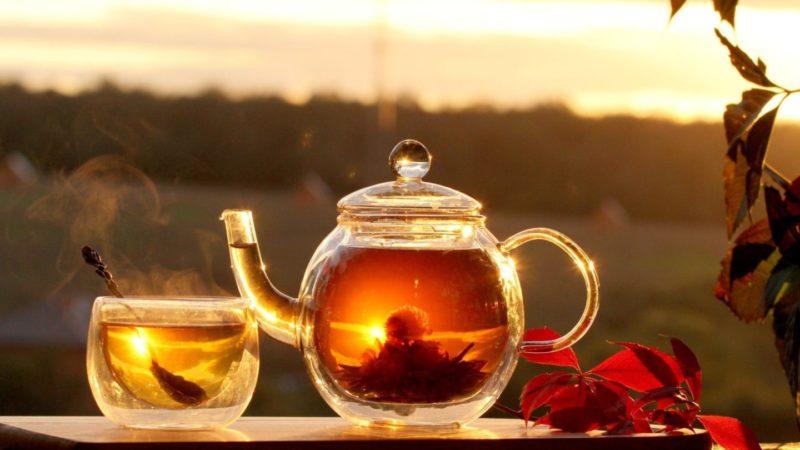 Чай может изменить генетику