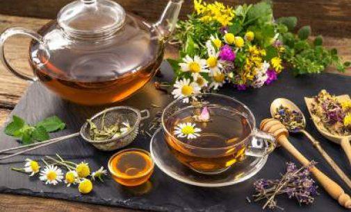 Для здоровья почек назван самый полезный чай