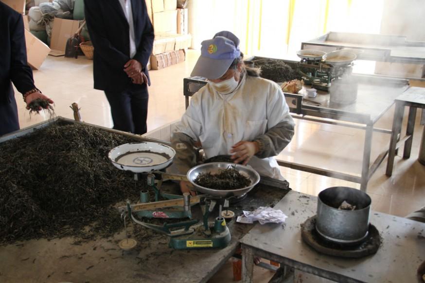 Контроль за качеством красного чая