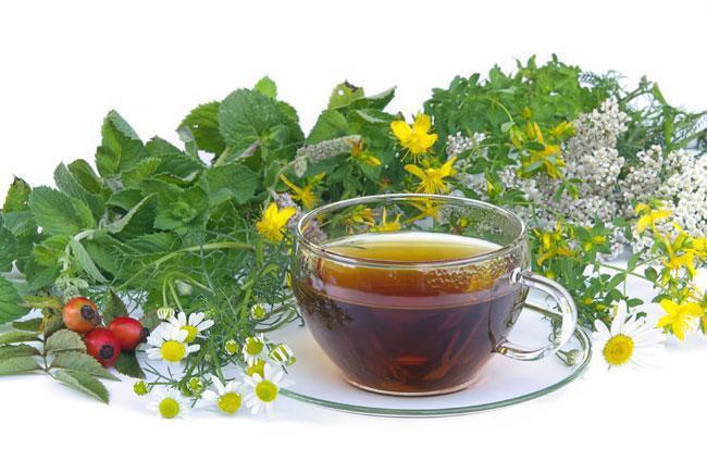 Чай, пустырник и женьшень при болезни Альцгеймера