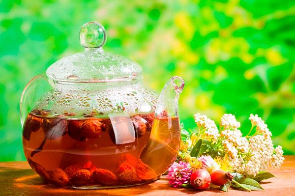 Чаи с лечебными травами: как не навредить себе