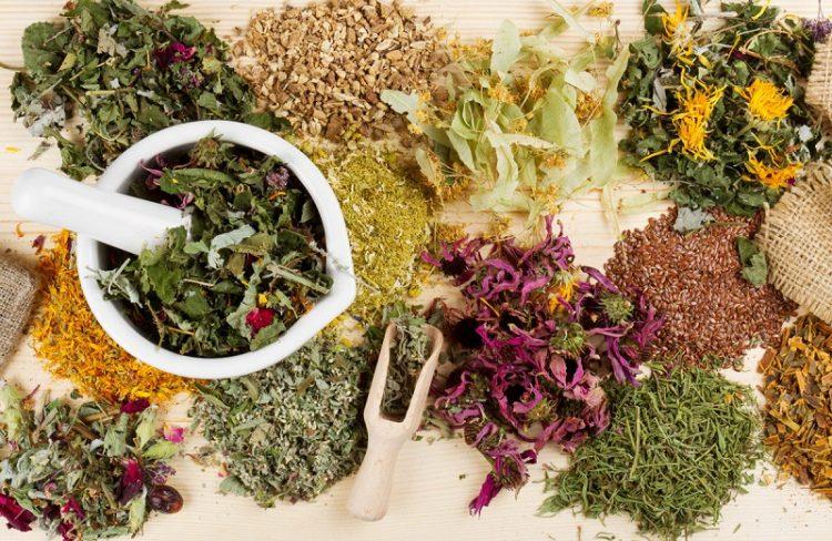 Чаи для сердца: травы для сердечно-сосудистой системы