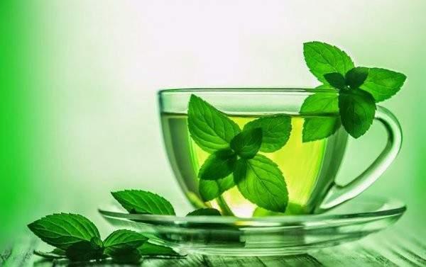 Мятный чай положительно влияет на память