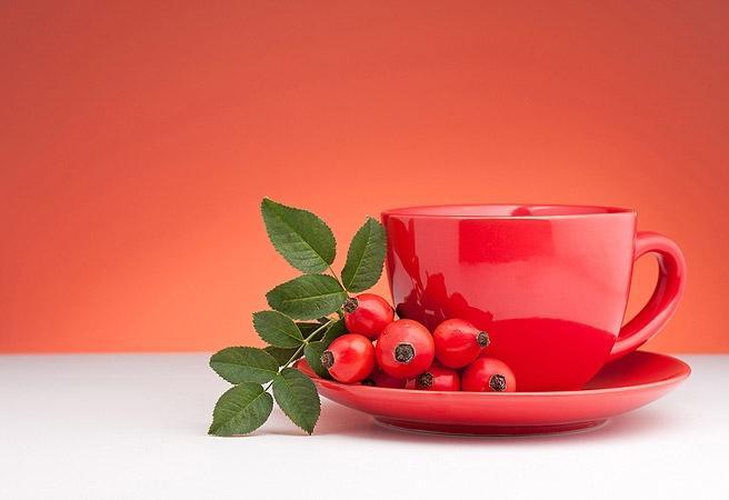 Чай из плодов шиповника на страже здоровья будущих мам