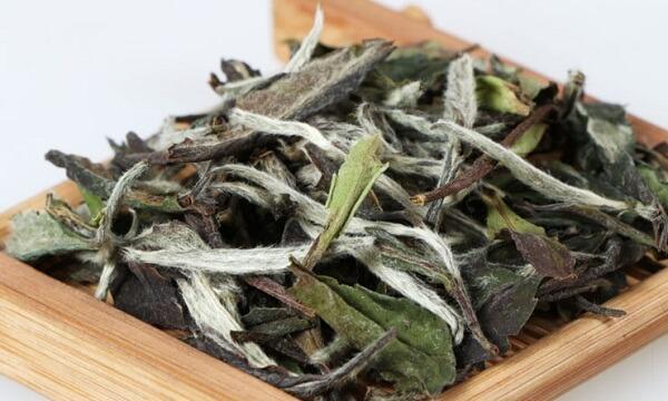 Какую тайну хранит чай Бай Му Дань