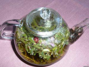 Какие травяные успокаивающие чаи лучше действуют на организм?