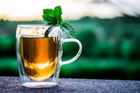 Чем чай и вино так полезны для мозга?