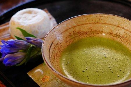 От рака может защитить японский чай