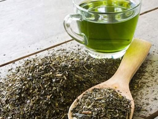 Ученые подтвердили пользу зеленого чая в борьбе с ожирением