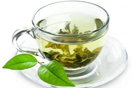 Как зеленый чай влияет на работу организма