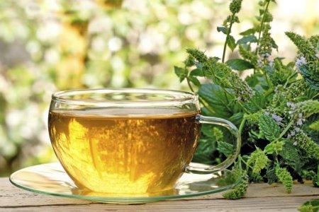 Какой чай самый эффективный для похудения?