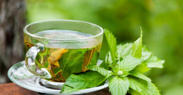 Почему мятный чай нужно пить как можно чаще