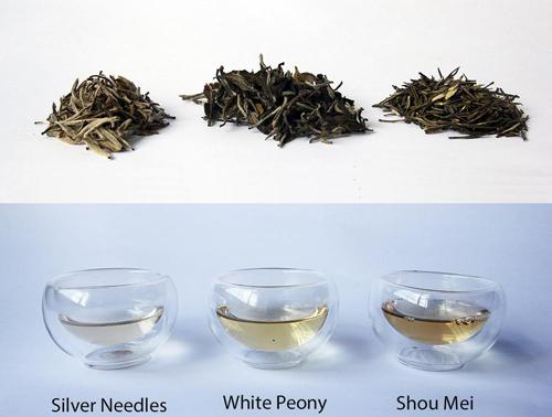 Виды и сорта белого чая