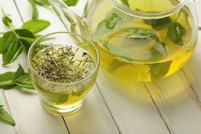 Зеленый чай защитит от старения и простуд