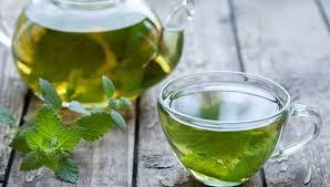 Мелисса и чай из мелиссы