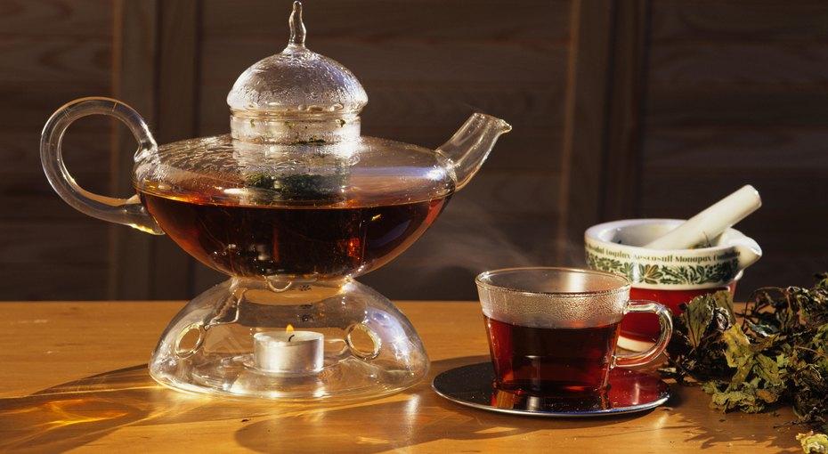 Вам с плесенью или с кишечкой? Спецпроект Роскачества о черном чае