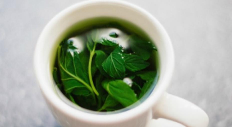 Преимущества зеленого чая перед остальными напитками