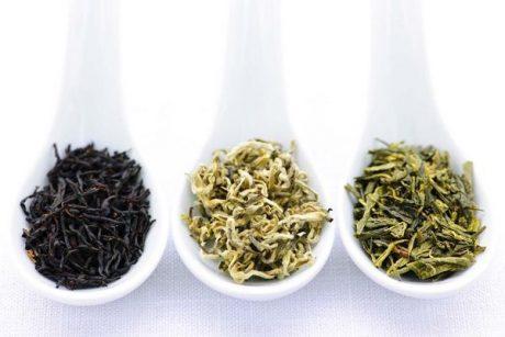 ТОП-3 наиболее полезных видов чая