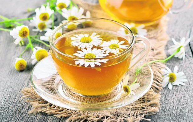 Ромашковый чай поможет избавиться от многих недугов: 6 причин полюбить ароматный напиток