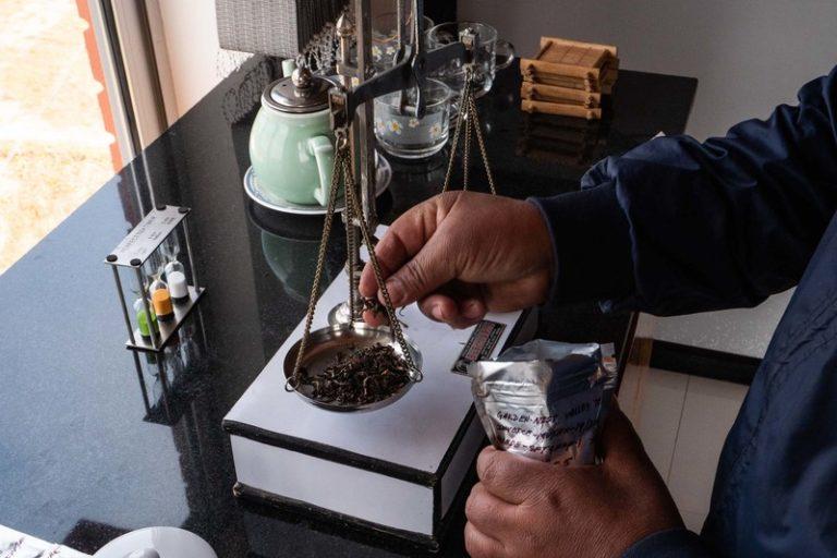 Непальский чай из Гималаев: наше путешествие за новыми вкусами