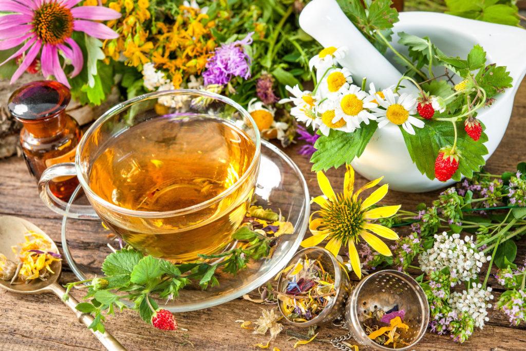 Витаминный чай из «золотого дерева»