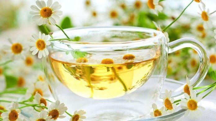 Названы полезные свойства ромашкового чая