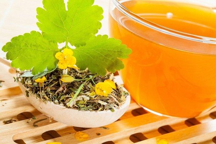 Чистотел и рак: как применяется растение в лечении
