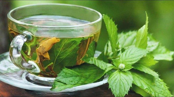 Травяные чаи для снижения давления