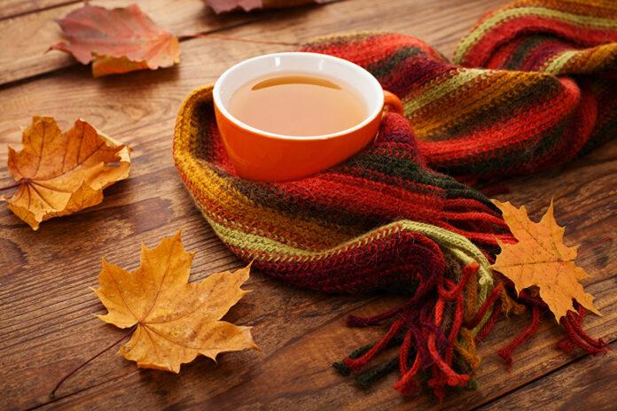 Диетологи подсказали, как не набрать вес осенью
