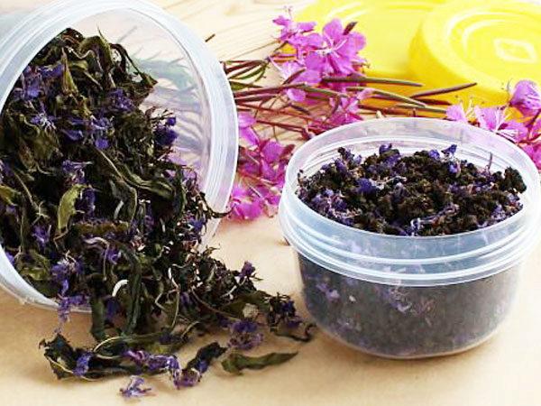 Черный чай из иван-чая: ферментирование,сушка