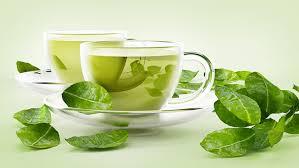 Сколько сортов зеленого чая существует