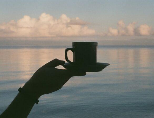 Имбирный чай для похудения: как он работает