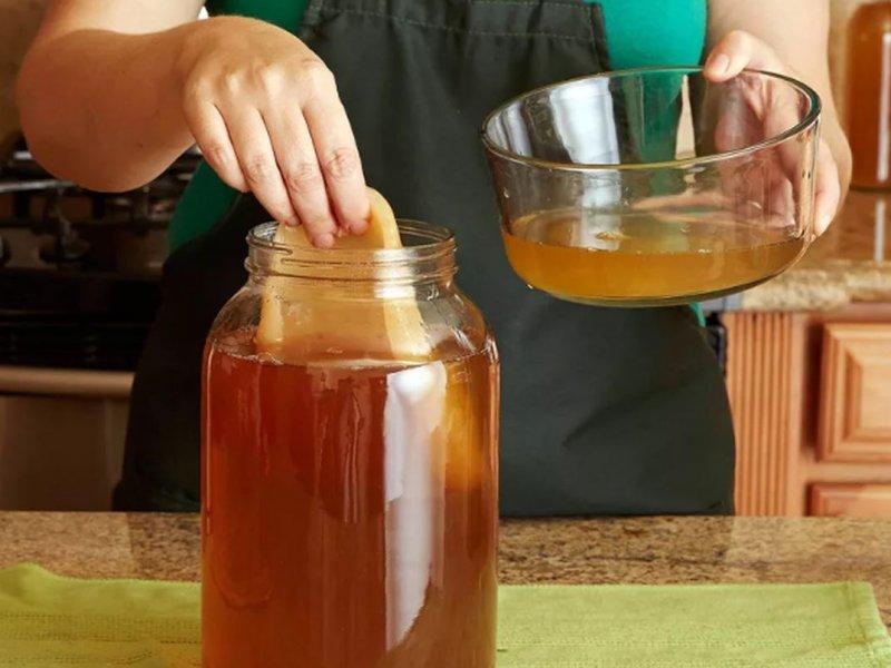 Диетолог призывает не употреблять чайный гриб из-за его опасности для здоровья