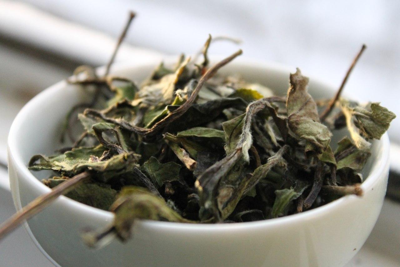 Осенью китайцы почти не пьют зеленый чай. А что тогда?
