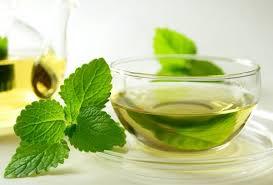 Почему мужчинам вредно пить мятный чай?