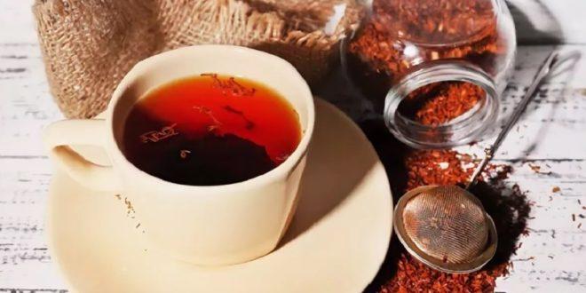 Недооцененный чай ройбуш: почему стоит выпить чашечку
