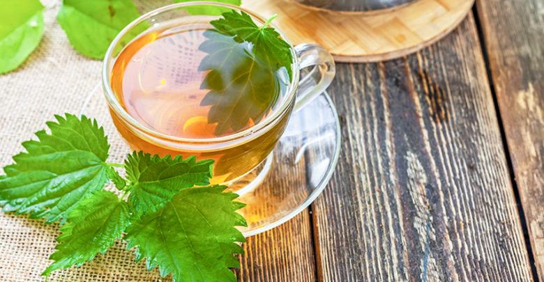 6 полезных свойств крапивного чая