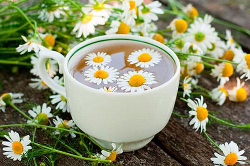 Ромашковый чай – польза неоценима!