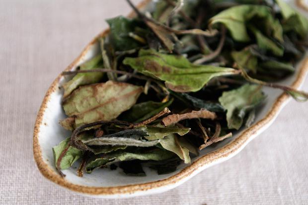 Почему этот чай называют белый и чем он полезен