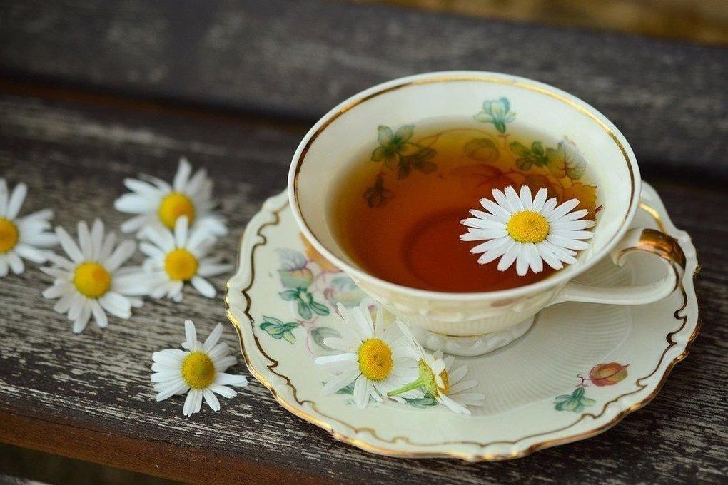 Немецкие ученые объяснили, как неправильное заваривание чая может превратить напиток в яд