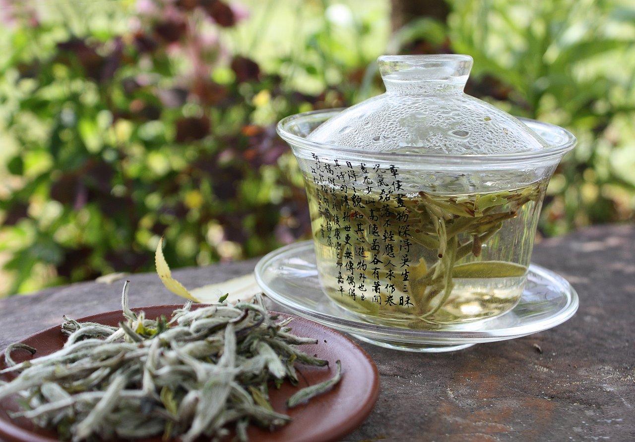 Польза и свойства белого чая