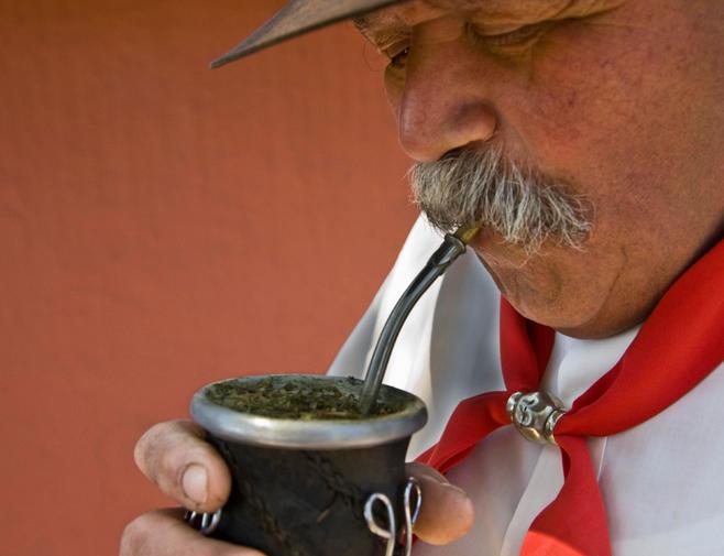 Чай мате — что такое матэ и как его пить