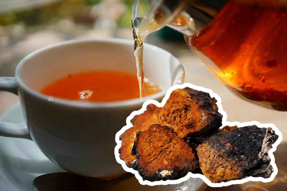 Травяной чай с чагой