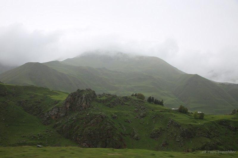 История грузинского чая
