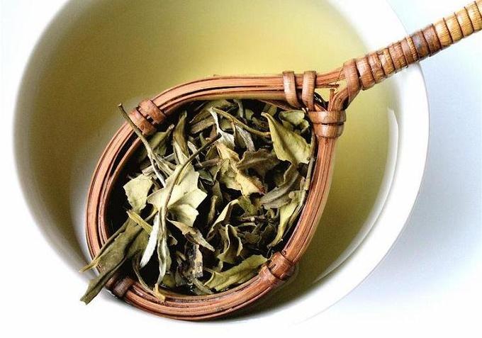 Зеленый чай – эликсир долголетия
