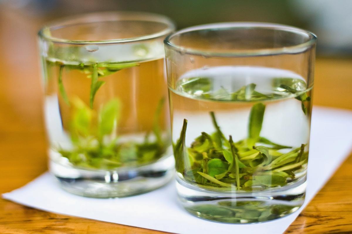 Зеленый чай: лекарство или профилактическое средство?