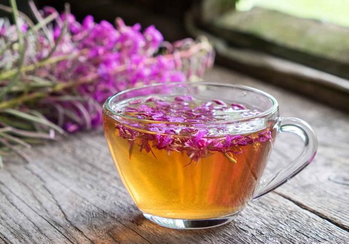 Как заваривать иван-чай: рецепты и рекомендации